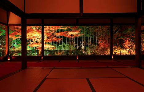 宝泉院 紅葉 画像