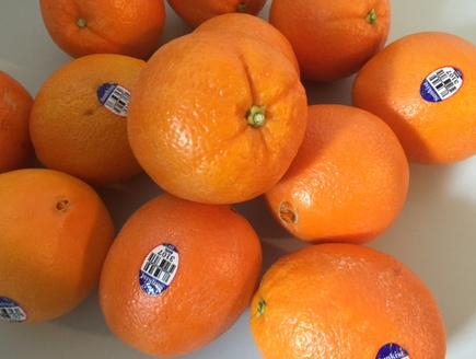 ネーブルオレンジ 画像